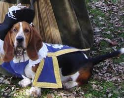 Large Halloween Costumes Large 3 Musketeer Dog Pet Costume Mattionline