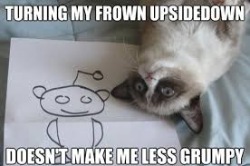 Grumpy Cat Sleep Meme - best grumpy cat memes that you ll ever see