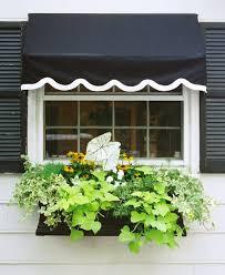 Hooks And Lattice by Window Box Contest Entry My Kitchen Window Box Window Box