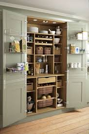 Kitchen Cupboard Interior Storage 15 Great Storage Ideas For The Kitchen Anyone Can Do 2 Larder