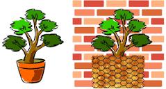 jardinierparesseux.files.wordpress.com/2020/09/200...