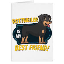 my best friend rottweiler cards greeting photo cards zazzle