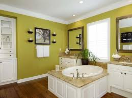 Green Bathroom Ideas by Best 25 Lime Green Bathrooms Ideas On Pinterest Green Painted