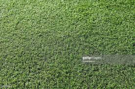 astroturf close up of astro turf stock photo getty images