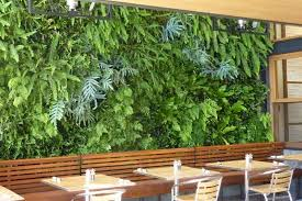 vertical garden ideas jpg 1600 1067 smf pinterest fern