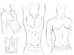 male body sketches by vinnie14 on deviantart