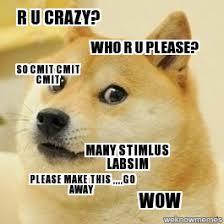 Make Doge Meme - doge r u crazy who r u please so cmit cmit cmit many stimlus