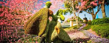 flowers international epcot international flower garden festival kingdom magic vacations