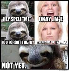 Sloth Meme Pictures - sloth meme by cherryplumtree121 memedroid