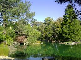 Botanical Garden Sydney by Japanese Garden Auburn Botanic Gardens Sydney By 3tobmee