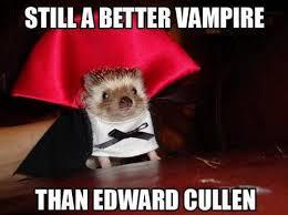 Funny Halloween Meme - still a better vire than edward cullen funny cute lol costume