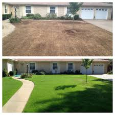 seeding your lawn the classic lawns way classic lawns