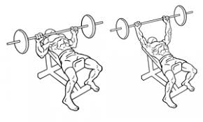 Incline Dumbell Bench Press What Is The Best Workout For Your Chest Quora