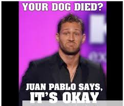 The Bachelor Memes - your dog died juan pablo says it s okay the bachelor meme joke