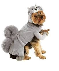 Dog Costumes Halloween 10 Large Dog Costumes Images Pet Costumes