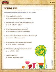 the plant story u2013 free printable plant worksheet for 1st grade