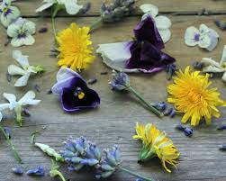 edible flower garnish edible flowers in cake decoration flowers and company