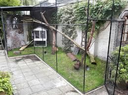 Extra Large Rabbit Cage Best 25 Rabbit Enclosure Ideas On Pinterest Outdoor Rabbit