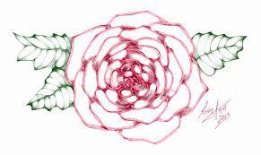 a simple rose sketch art by rroxyann on deviantart