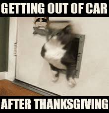 image getting out of my car after thanksgiving weekend