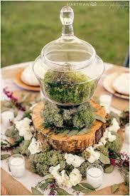 hartman outdoor photography u2013 wedding photographers u2013 asheville