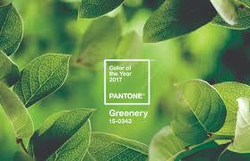 greenery a cor do ano de 2017 pela pantone inspira casa