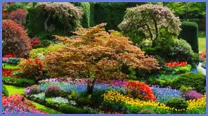 re train your brain to happiness butchart gardens vancouver