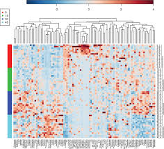 a metabolomics approach to uncover the effects of grain diets on