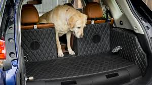 nissan rogue star wars is nissan u0027s rogue dogue a good place to put dogs or a dog prison