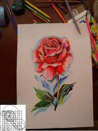 rose color pencil drawing by robiartimre on deviantart