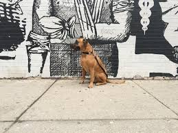 luke x wicker park wall