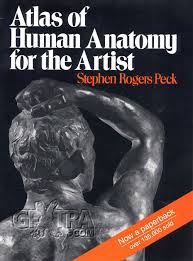 Netter Atlas Of Human Anatomy Pdf Download Atlas Of Human Anatomy Pdf Periodic Tables