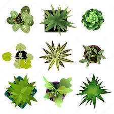 easy plants top view plants easy copy paste in your landscape design projects