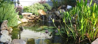 pond u0026 water feature construction willow ridge oak ridge