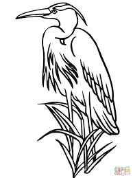 heron coloring pages free coloring pages