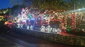 turtle back zoo lights 11 things to do with your kids this holiday season in new jersey