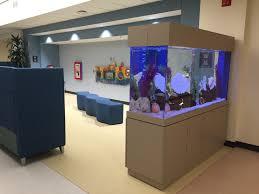 Aquarium Room Divider Clayton Aquariums