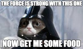 The Force Is Strong With This One Meme - grumpy cat star wars meme imgflip