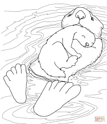 download otter animal coloring pages