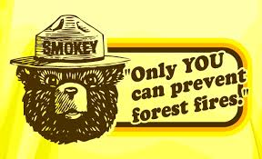 Only You Can Prevent Forest Fires Meme - only you arnold zwicky s blog