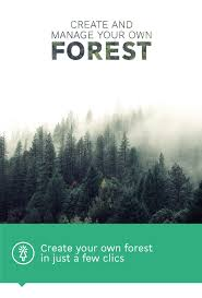 forestals black friday 2016 youtube reforestum place and grow your own forest in real life by diego