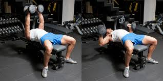 Flat Bench Press Dumbbell Hammer Grip Dumbbell Bench Press Weight Training Exercises 4 You