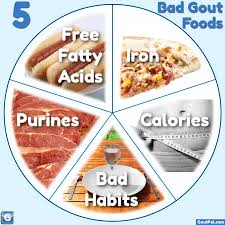 what are your 5 bad gout foods goutpal gout facts