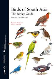 100 bird field guide plate 7 eagles a field guide to birds