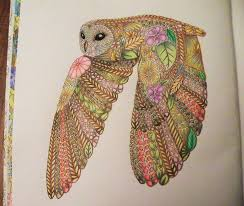 31 Best Animals In Detail Color Book Horned Owl Images On Owl Coloring Ideas