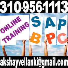 Sap Bpc Resume Samples by Sap Bpc Sap Bpc Faqs Sap Bpc 7 5 Nw Training March 2012