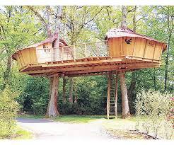 enticing tree house plus washington tree house tree house plans