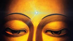 om mani padme hum beautiful live shining third eye wallpaper