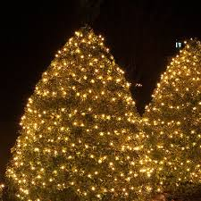 christmas tree shop ls net lights and tree wraps
