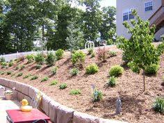 Easy Backyard Landscape Ideas Do It Yourself Cheap And Easy Backyard Landscaping Solutions For